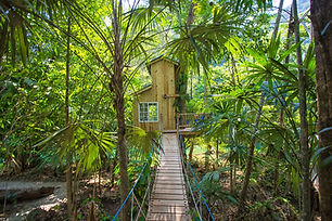 Treehouse_Small_Exterior-9.jpg