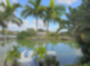 Backyard 2 Florida.jpeg