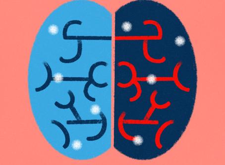 White Marks on the Brain
