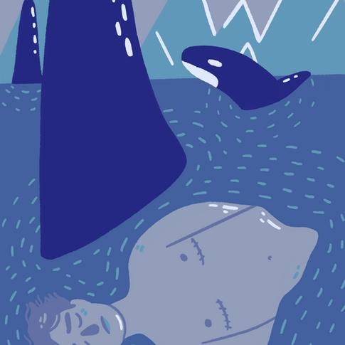 6. Orca Mother Drops Calf