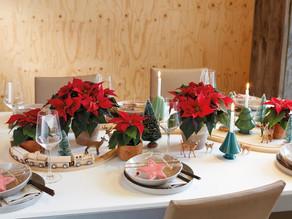 Weihnachtswunderland – Tischdekorationen mit Poinsettien