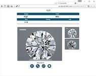DiaCam360 White Diamond