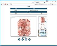 DiaCam360 Pink Stone
