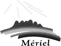 LOGO-Meriel.jpg