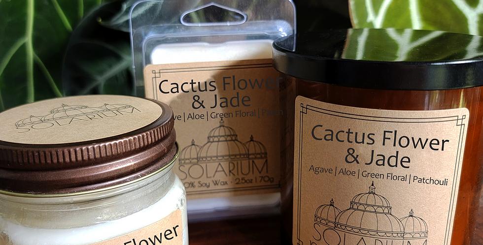 Cactus Flower and Jade