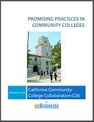 promising practices.JPG