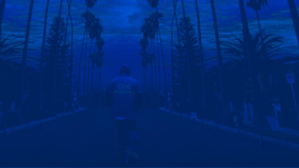 California Dreamin BG.jpg