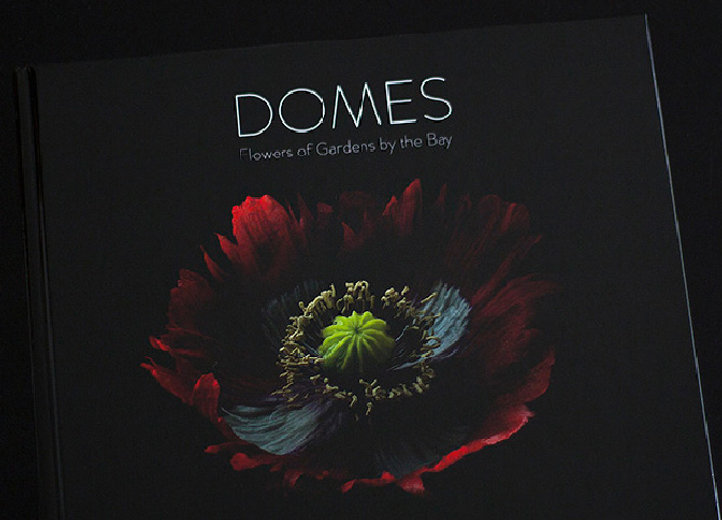 DOMES_Cover.jpg
