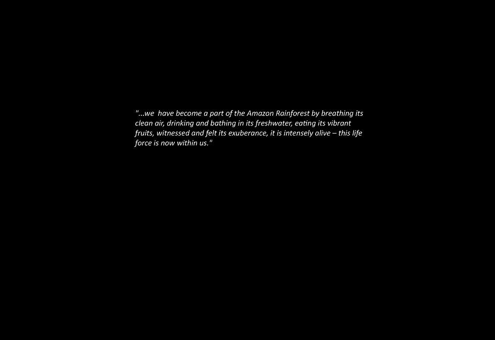 AMAZON-QUOTE.jpg