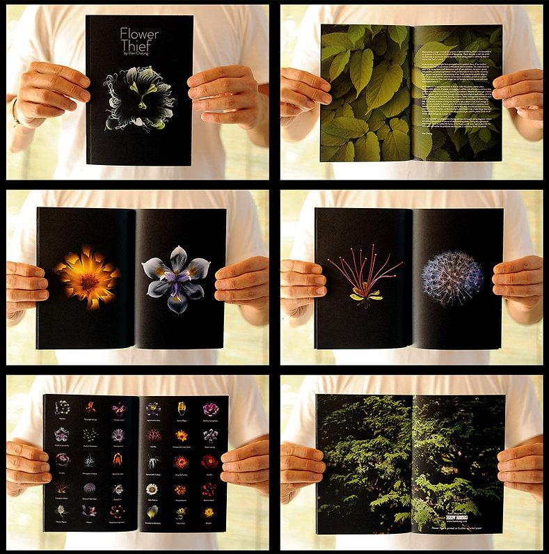 FlowerThief-image-cropped.jpg