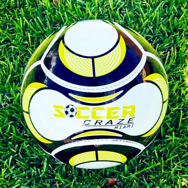 Soccer Craze Ball