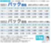 ドライユーティリティ ボタンダウンポロシャツ UnitedAthle5050/5052価格表