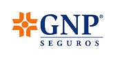 logo-GNP.jpeg