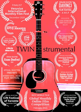 Twinstrumental poster with laurels.JPG