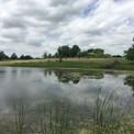 Starfire Pond