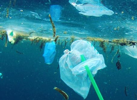 Despedimo-nos das palhinhas de plástico!!