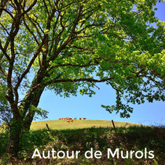 Autour de Murols