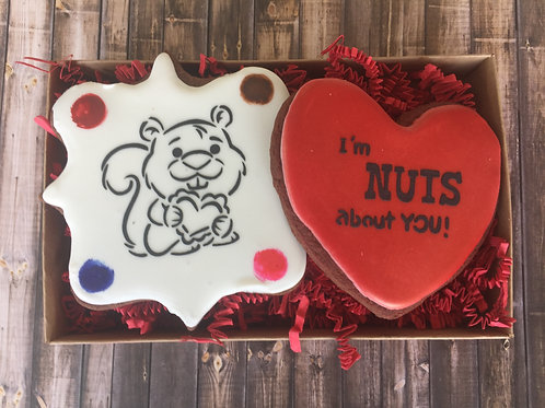 "Paint Your Own ""I'm Nuts About You"" Package"