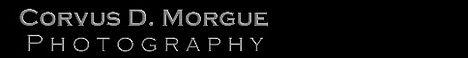 www.corvusdmorgue.photography