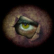 eye-3383682.jpg