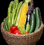 野菜-menu.png