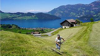 Camperstellplätze Schweiz