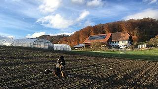 Bauernhofcamping Schweiz