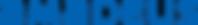 amadeus-vector-logo.png