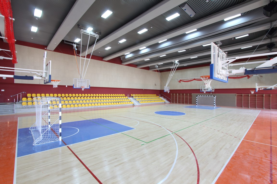 Hassan Arafeh gym