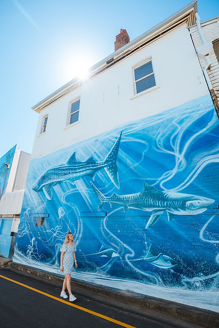 Maryborough Mural Trail_Promo 2 lr.jpg