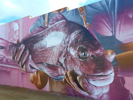 SA Art Town: 12 Absolutely Awesome Tumby Bay Holiday Experiences