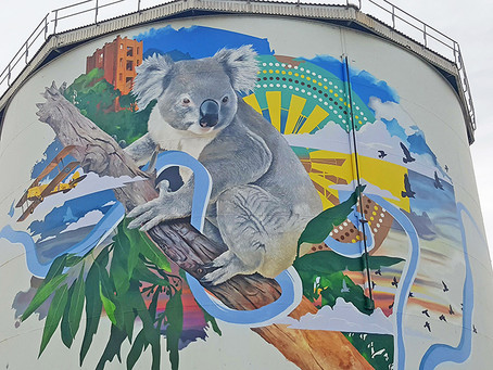 Naranderra Mural Speaks on Behalf of the Riverina Community