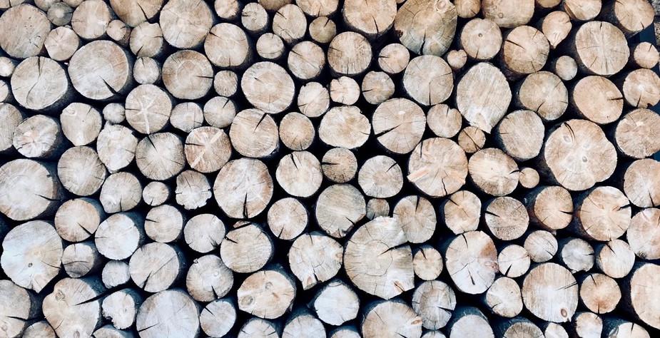 """""""Timber"""""""
