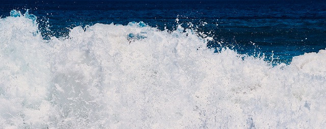 """Splash"" In Living Color Series #1"