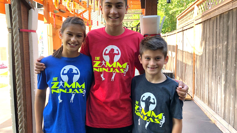 The Zimm Ninjas t-shirt