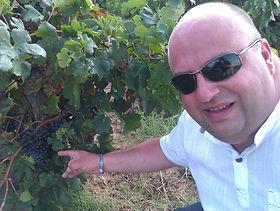James Wine Grapes.jpg