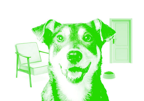 WD-greentemplate-Services-InHome.jpg