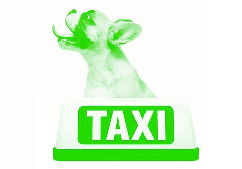 WD-greentemplate-Services-Taxi.jpg