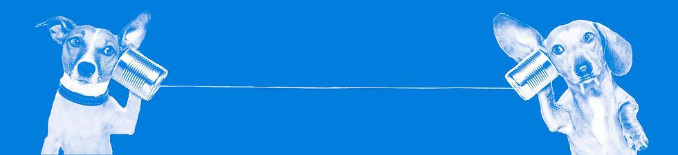 WD-bluetemplate-FAQ-wide.jpg