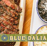 Blue Dalia