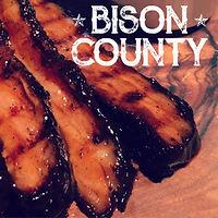 BisonCounty.jpg