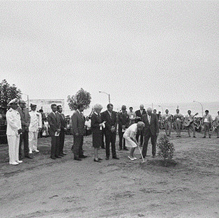 First Lady Pat Nixon plants a tree.