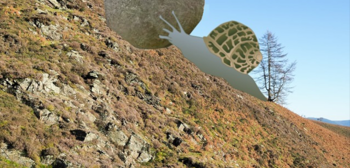 083 - Determination - Slow and Steady by Charles Addey.png
