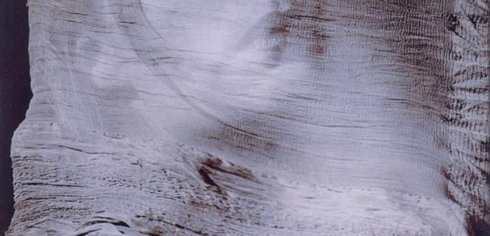 052 - Woman in Veil - by Andrea Björsel