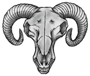 illustration-147-2.jpg