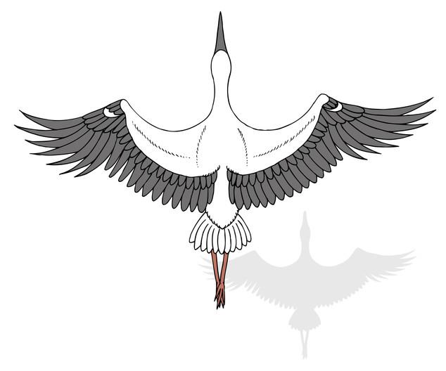 illustration-150-2.jpg