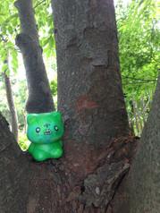 緑1.JPG