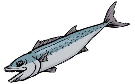 illustration-175-2.jpg