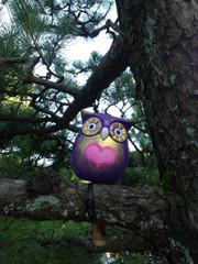 紫1.JPG