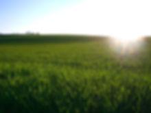 leben-mit-solarenergie-41-58210632.jpg